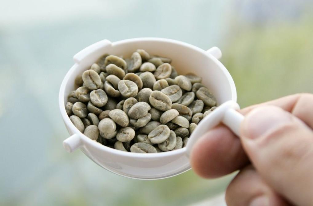 como usar cafe verde salvat