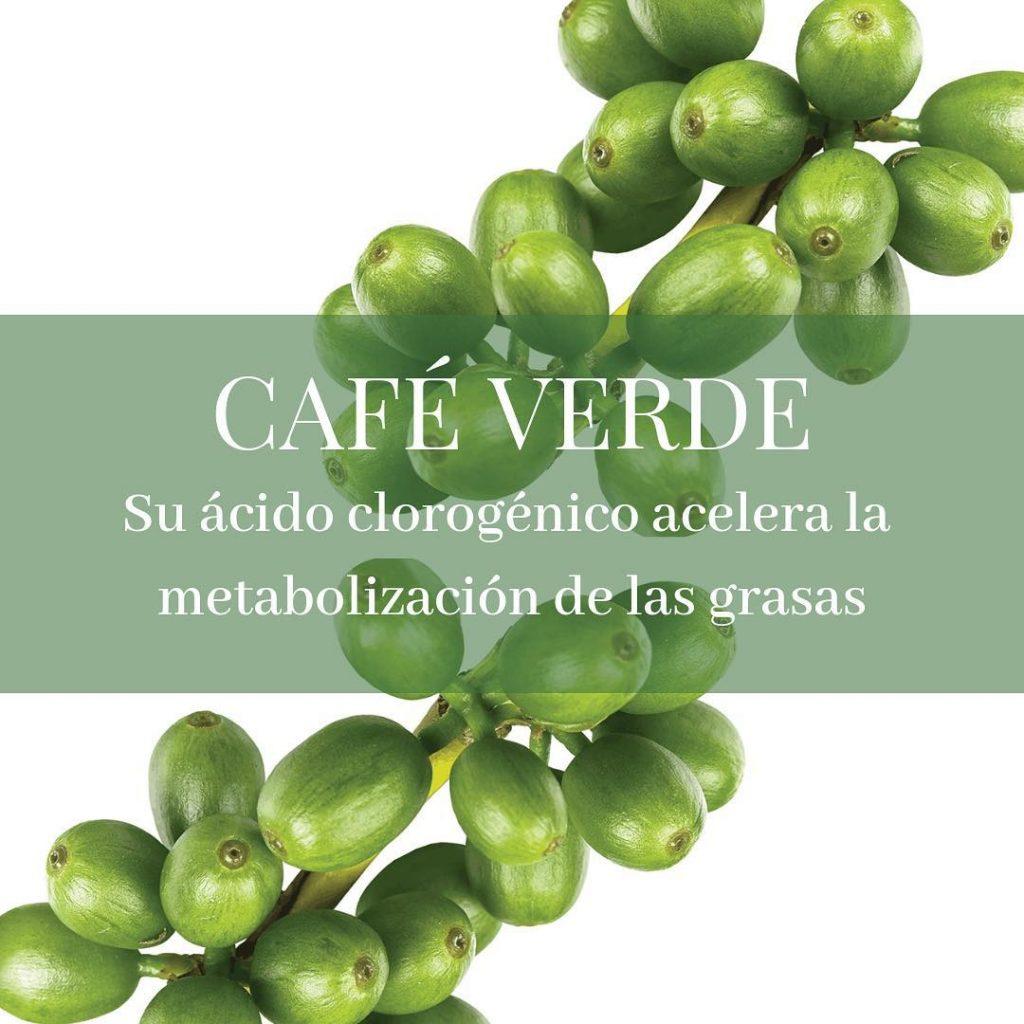 cafe verde en herbolarios