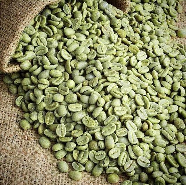 cafe verde salvat