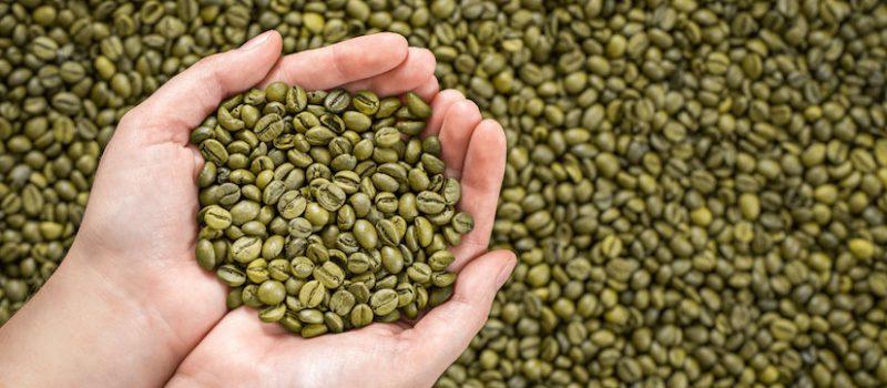 cafe verde sadiet