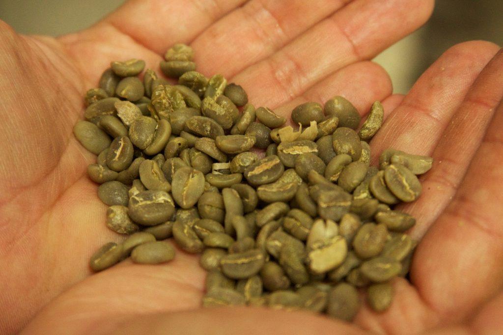 naturtierra cafe verde opiniones