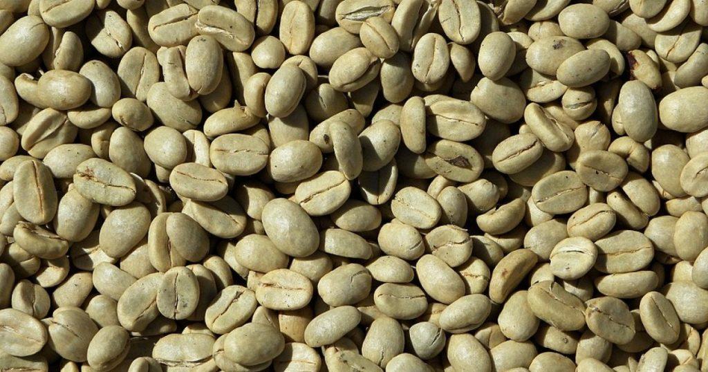 cafe verde propiedades y contraindicaciones